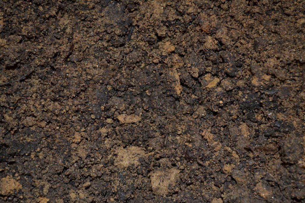 dirt, soil, potting-947985.jpg